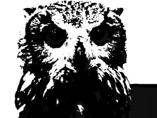 フクロウのハーフトーンパターン画像