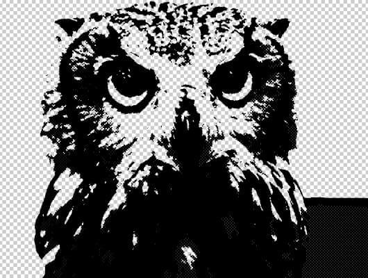 フクロウの完成画像